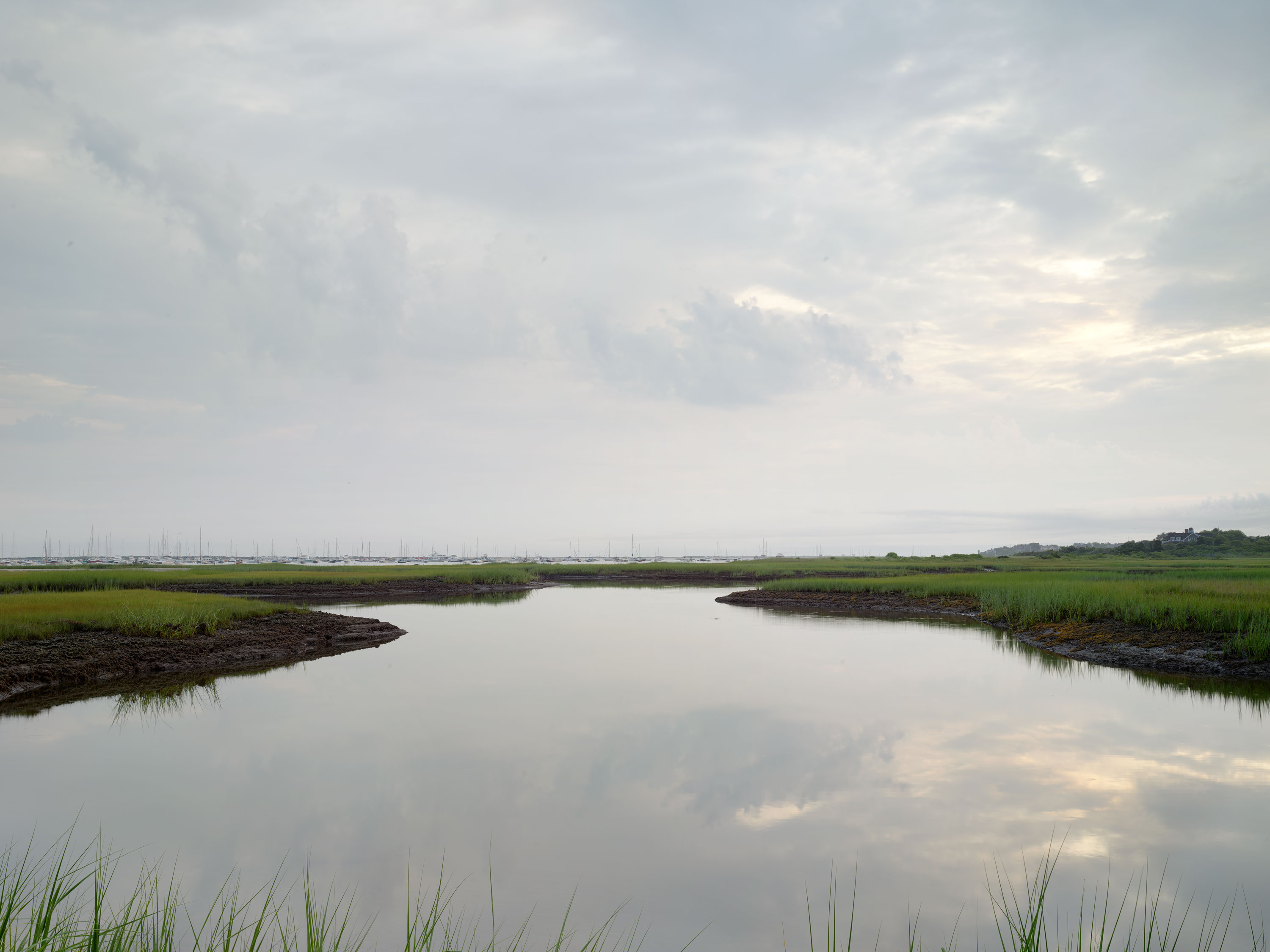 Creeks at Dawn #622-627 |  Nantucket  |  Michael Gaillard