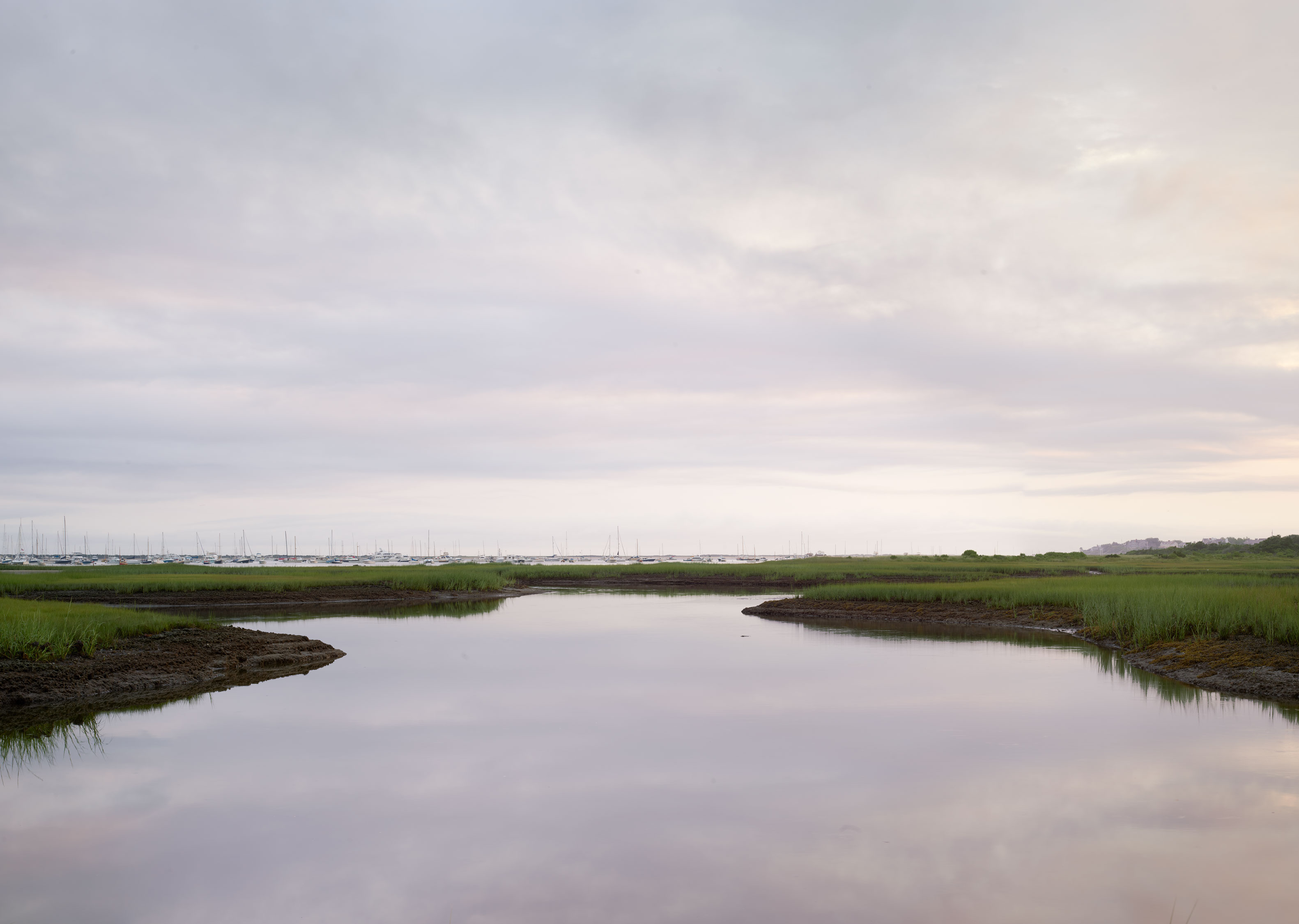 Creeks Dawn #654-658 |  Nantucket  |  Michael Gaillard