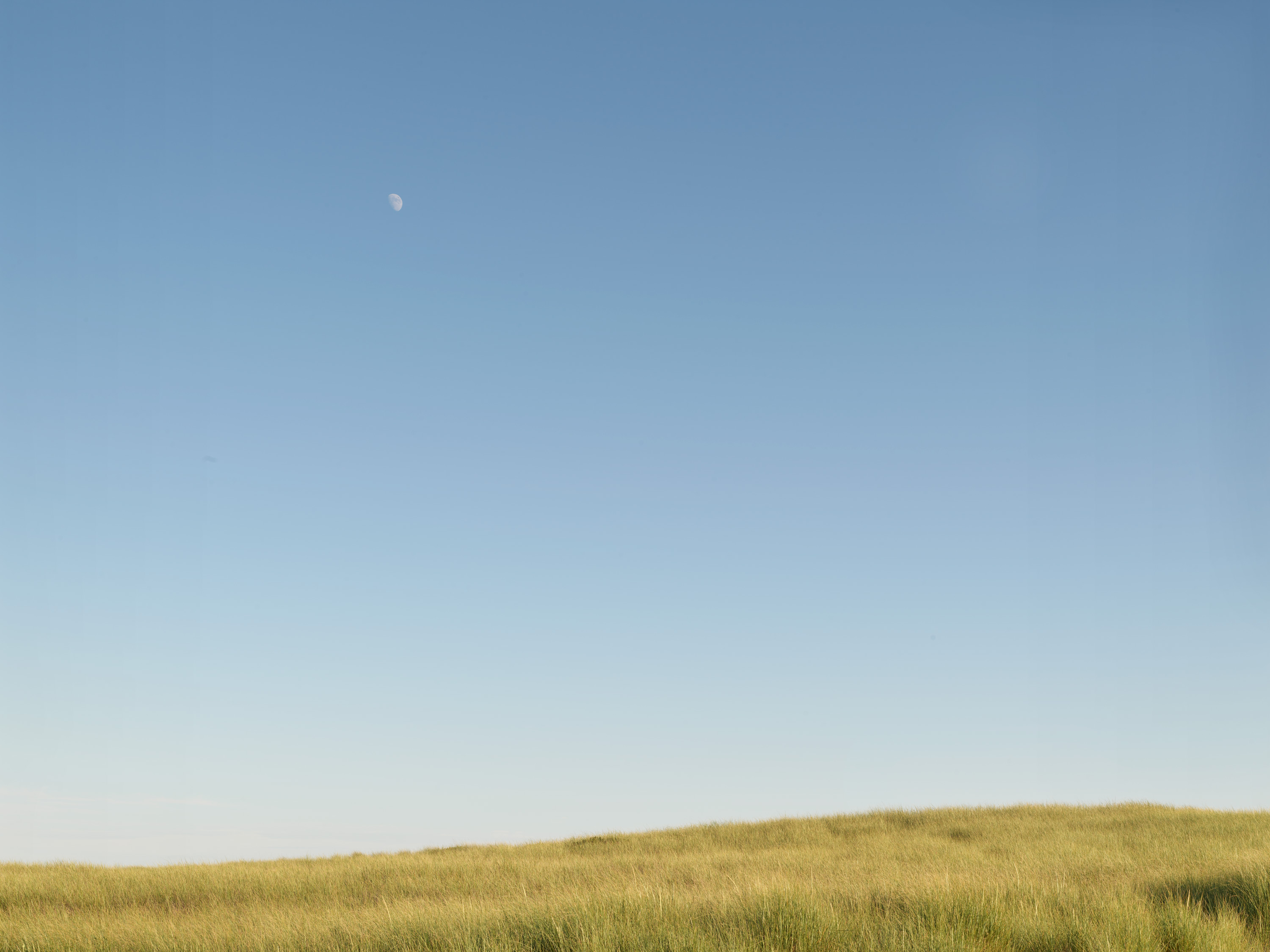 Setting Moon #5530  |  Nantucket | Michael Gaillard